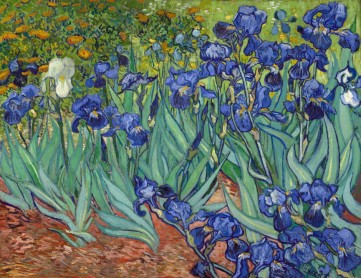 Картина «Ирисы» Винсент Ван Гог