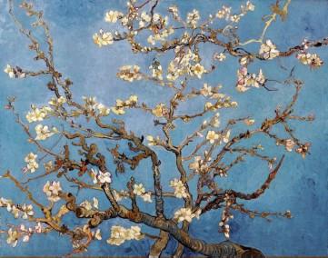 Картина  «Цветущий миндаль»  Винсент Ван Гог